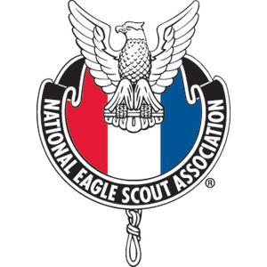 NESA-Emblem-(4-color)